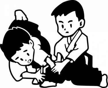 Stichting aikido dojo niseikan uden